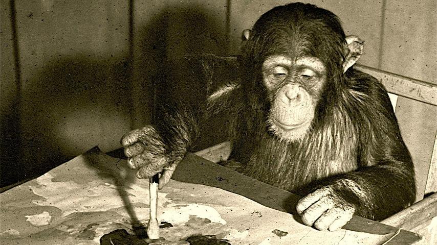 Animales inteligentes, documental de la BBC por Canal Uno